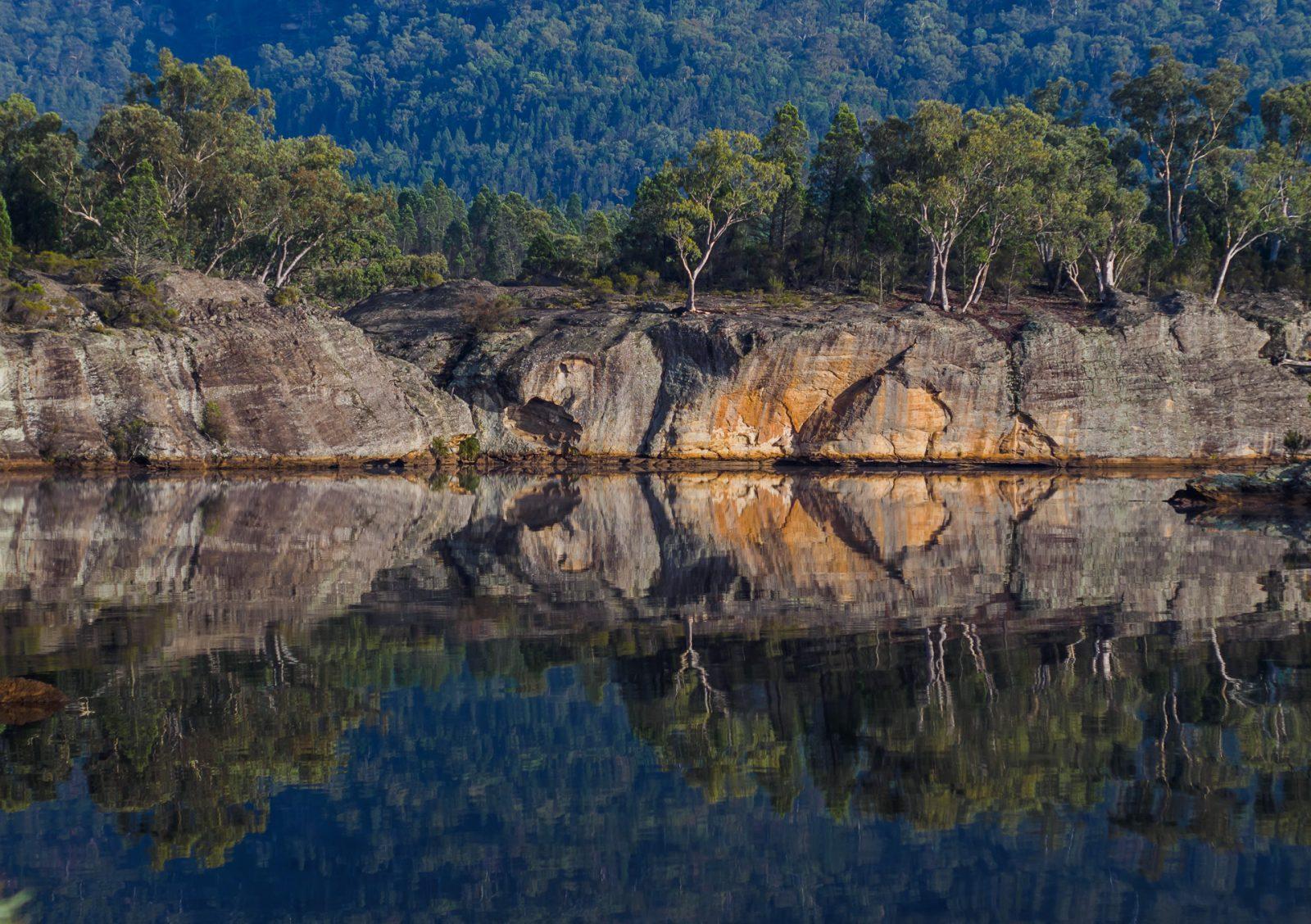 dunns swamp – pagodas